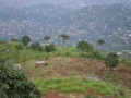 20_farming_on_a_hill_above_freetown.jpg