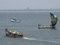 Boats in the harbor.jpg